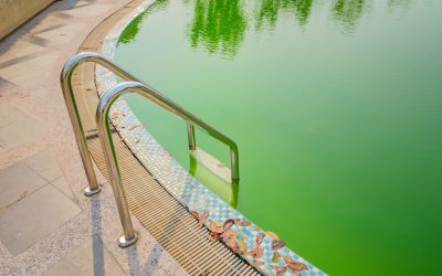 How to Clean a Green Swimming Pool Fast